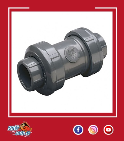 true union swing check valve 32 mm.