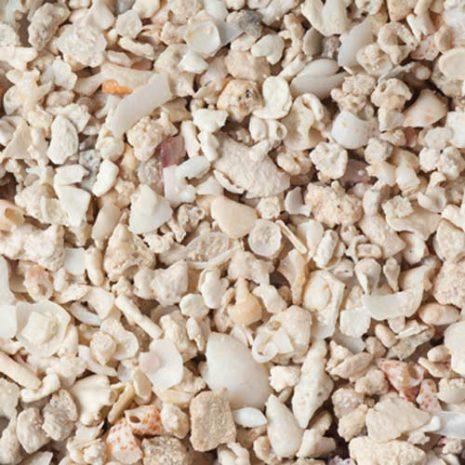 Florida Crush Coral (ถุง)